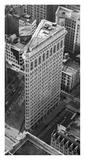 Flatiron Building, NYC Affiches par Cameron Davidson