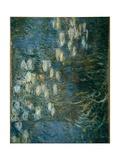 Ninfeas Láminas por Claude Monet
