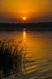 Sunrise over the Nile in the Murchison Falls National Park, Uganda, East Africa, Africa Fotografisk tryk af  Michael
