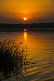 Sunrise over the Nile in the Murchison Falls National Park, Uganda, East Africa, Africa Impressão fotográfica por  Michael