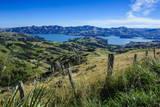 Beautiful Scenery around Akaroa Harbour Impressão fotográfica por  Michael