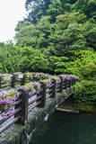 Stone Bridge with Flowers in Seogwipo Photographic Print by  Michael