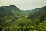 Mountainous Scenery in Southern Uganda, East Africa, Africa Fotografisk tryk af  Michael