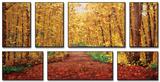 Autumn Dream Affiches van Graham Forsythe