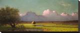 Sunlight and Shadow: The Newbury Marshes, c. 1871/1875 Stretched Canvas Print by Martin Johnson Heade