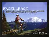 Excellence Print