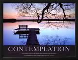 Contemplation Prints