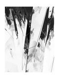 C101 Prints by Alexis Marcou