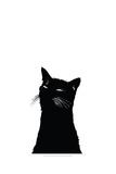 Me Ow Lámina giclée prémium por Alex Cherry
