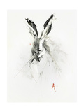 Mr. Rabbit Poster von Alexis Marcou