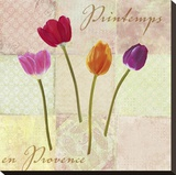 Printemps en Provence Stretched Canvas Print by Remy Dellal