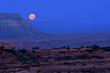 A Full Moon Seen from the Esplanade on the Bill Hall Trail, Grand Canyon, North Rim Fotoprint van Bennett Barthelemy