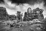 Garden of Eden and Bonsai Tree in Arches National Park in Utah Reproduction photographique par Patrick Brandenburg