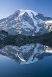 Scenic Image of Mt. Rainier National Park, Washington Fotografisk trykk av Justin Bailie