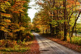 USA, Maine, Bethel. Wood Trail with Fall Foliage Reproduction photographique par Bill Bachmann