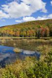 USA, Vermont, Burlington, Jericho. Lake with Autumn Foliage Reproduction photographique par Bill Bachmann