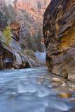 USA, Utah, Zion National Park. the Narrows of the Virgin River Fotografie-Druck von Jamie & Judy Wild