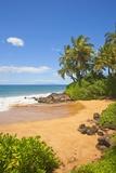 Chang's Beach on Maui Reproduction photographique par Ron Dahlquist