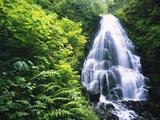 Waterfall in Silver Falls State Park Fotografisk trykk av Craig Tuttle