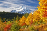 Fall Colors Add Beauty to Mt. Hood, Mt. Hood National Forest, Oregon, Fotografie-Druck von Craig Tuttle