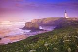 Sunrise Thru Fog, Yaquina Head Lighthouse, Oregon Coast. Pacific Northwest, United States Photographic Print by Craig Tuttle