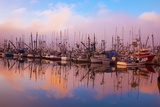 Morning Fog and Fishing Boats, Newport Harber, Oregon Coast. Pacific Northwest Fotografie-Druck von Craig Tuttle