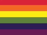 Gay Pride Rainbow Flag Print Poster Prints