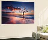 Tree in the Sea Fototapete von Marco Carmassi