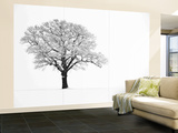 Waiting for Spring Wall Mural – Large by Doug Chinnery