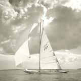 Sunlit Sails I Reproduction procédé giclée par Michael Kahn