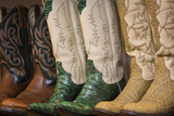 Cowboy Boots II Poster by Kathy Mahan