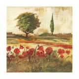 Poppy Field III Plakat af Gregory Gorham