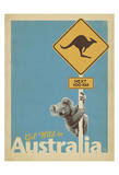 Get Wild in Australia Plakat af  Anderson Design Group