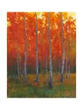 Changing Colors II Plakater av Tim O'toole