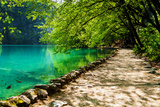 Path near A Forest Lake with Fish in Plitvice Lakes National Park, Croatia Fotografisk trykk av  Lamarinx