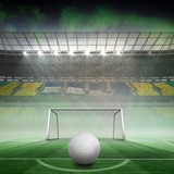 Digitally Generated White Leather Football against Vast Football Stadium for World Cup Impressão fotográfica por Wavebreak Media Ltd