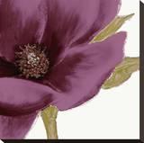 Grandiflora Blush I Stretched Canvas Print by Linda Wood