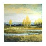 Marsh Lands I Reproduction giclée Premium par Michael Marcon