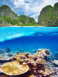 Beautiful Lagoon with Coral Reef Bottom Underwater and above Water Split View Photographic Print by  haveseen