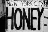 New York City Honey Union Square Market Fotografía