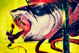 Graffiti Shark 5 Pointz New York City Foto