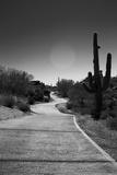 Cart Path on Desert Golf Course Arizona Foto