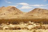 Mojave Desert Landscape Reproduction photographique par  duallogic