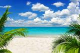 Beautiful Beach and Tropical Sea Fotografisk trykk av Vitaliy Pakhnyushchyy
