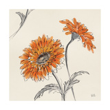 Orange Gerbera II Poster by Chris Paschke