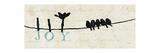 Birds on a Wire Stampa giclée premium di  Pela