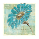 Spa Daisies II Posters by Chris Paschke