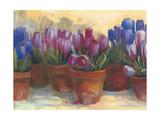 Spring Crocus Poster by Carol Rowan