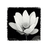 Lotus Flower I Posters by Debra Van Swearingen
