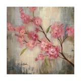Cherry Blossom II Prints